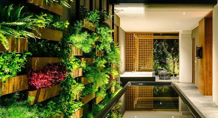 راهنمای دیوار سبز در دکوراسیون خانه